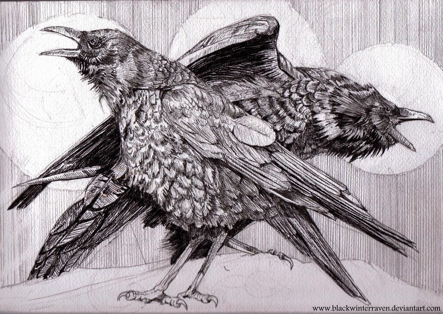 Image result for realistic drawings in ink