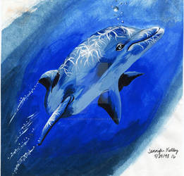 Flashback Dolphin Painting