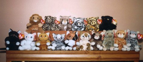 28bf747ab beanie babies collection by doomsdayking on DeviantArt