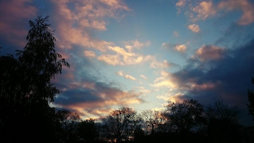 7:23 AM  by NanaZMEY
