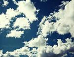 Sunny Sky by BeautifulChaos94