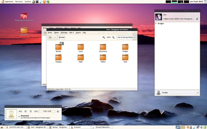 Ubuntu Desktop 080808