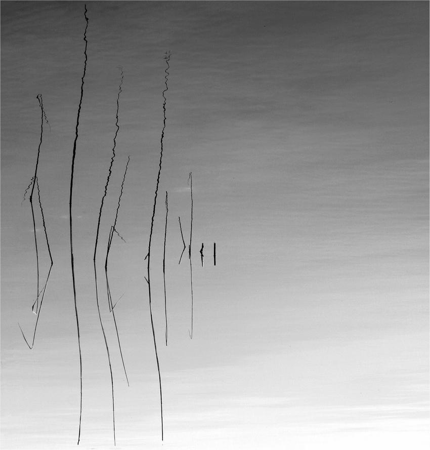 Silence by marrgit