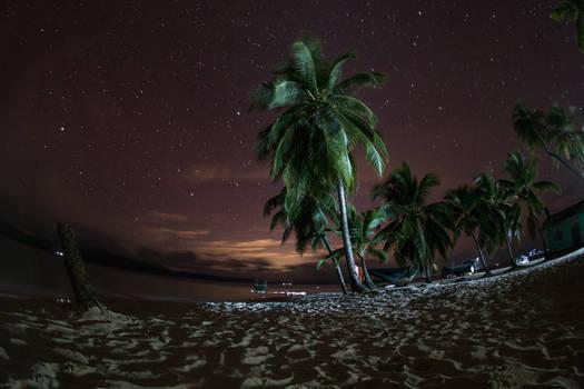 Paradise night sky