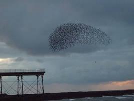 The swarm by Sliktor