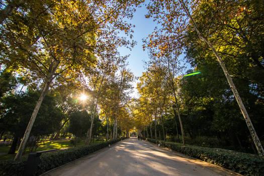 Seville in the sun