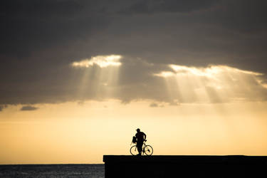 The cyclist at sunset