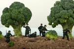 War in Broccoliville
