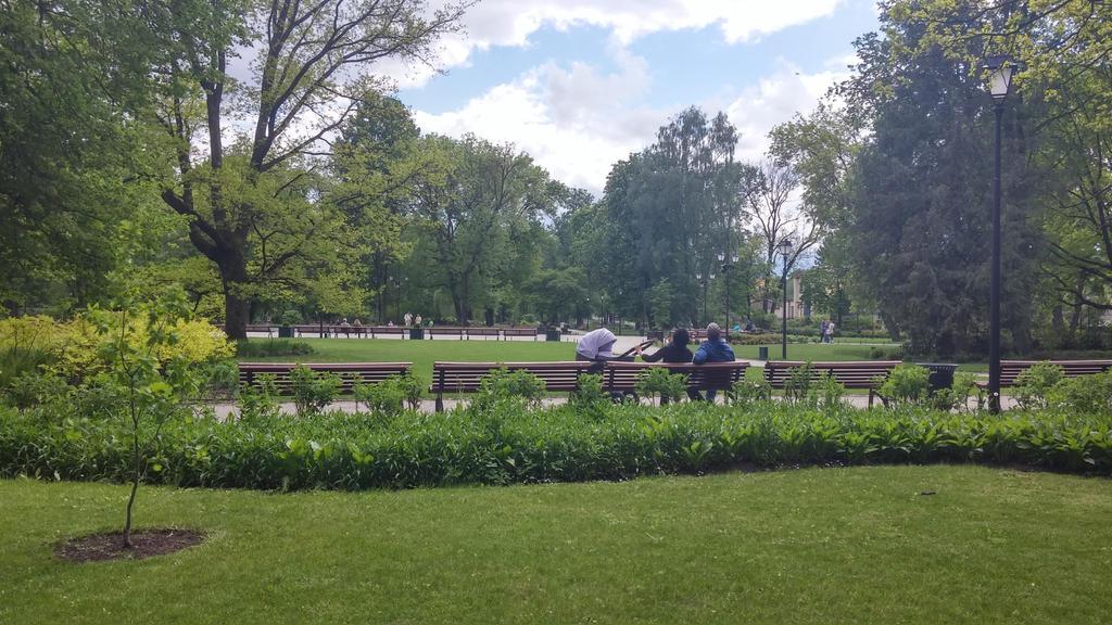 Park by AkvileS