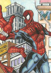 Amazing Spiderman PSC
