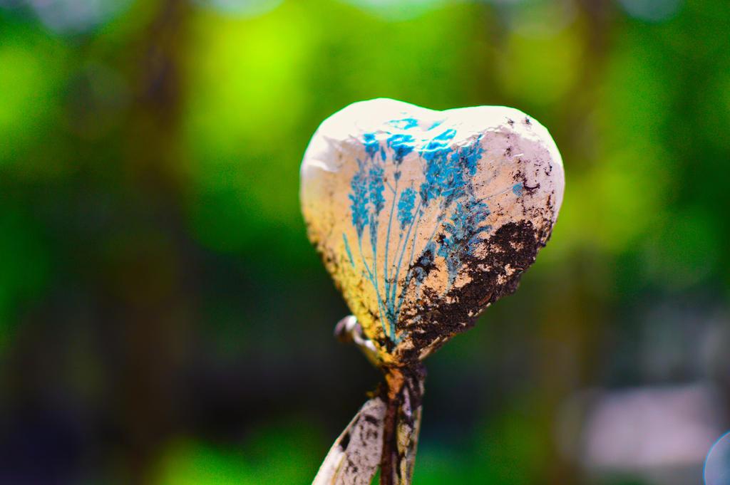 Heart by kleinerteddy
