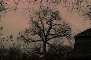Darkness by kleinerteddy