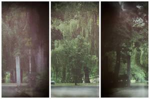 Park by kleinerteddy