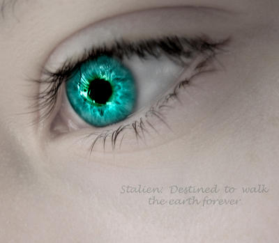 Eye ID for myself by stalien