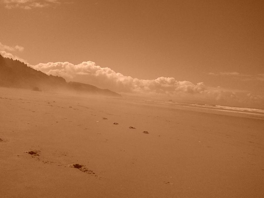 Sepia beachscape by Zapheil
