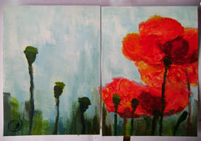 poppies by Morpho-Deidamia