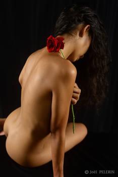 Fleur et Feminite