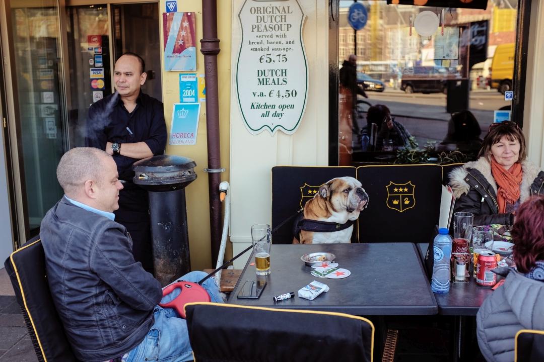 Bulldog at the cafe by siddhartha19