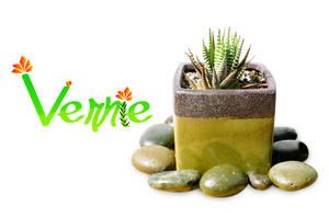 Vernie by UnknownVerve