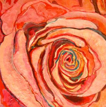 pink rose limousine, scott richard