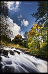 Autumn Rapids
