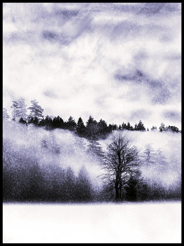 Snowy Forest by JayceRan