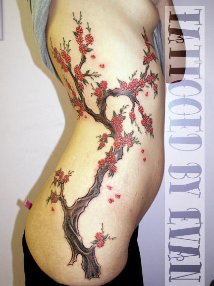 Cherry Branch by emcdclxvi