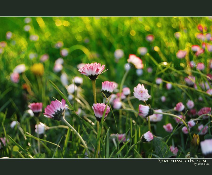 http://fc00.deviantart.net/fs26/i/2008/143/1/3/here_comes_the_sun____by_oro_elui.jpg