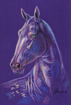 Pearl horse