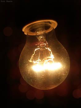 bulb 5