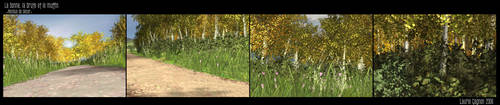 Demo 3D - Forest Renders by Ladylau