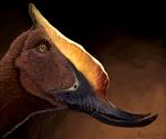 Dsungaripterus weii 2