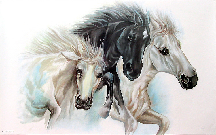 Horse painting black and white beauties pa87 l by for White and black paintings