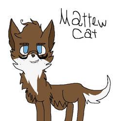 Matthew Kitty