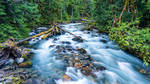 Sulfur Creek