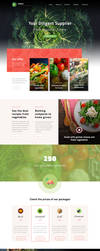 Vegals website by Micro-Shadi