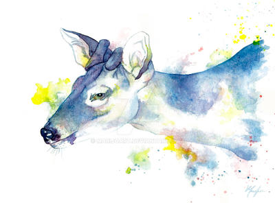 Watercolor Blue Brocker Deer by Marijoart