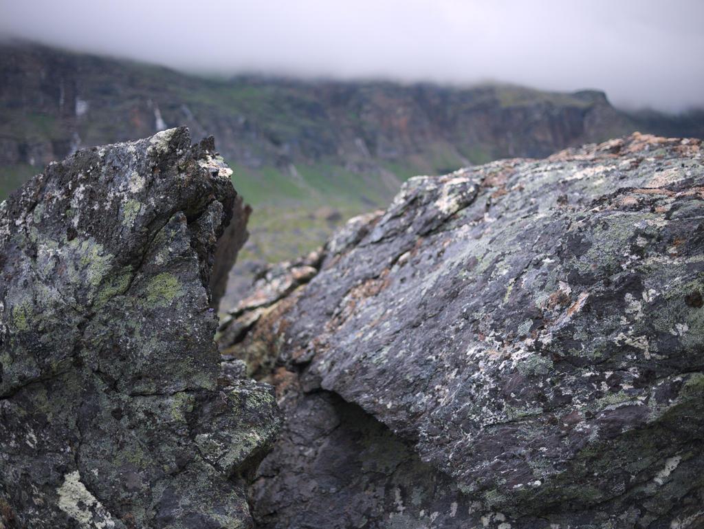 Rock by bitterologist