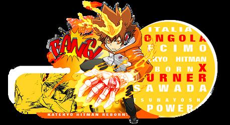 Tsuna X Burner signature Outcome