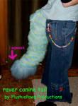 raver tail