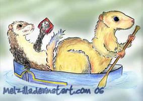 Ferrets in Seattle by melzilla