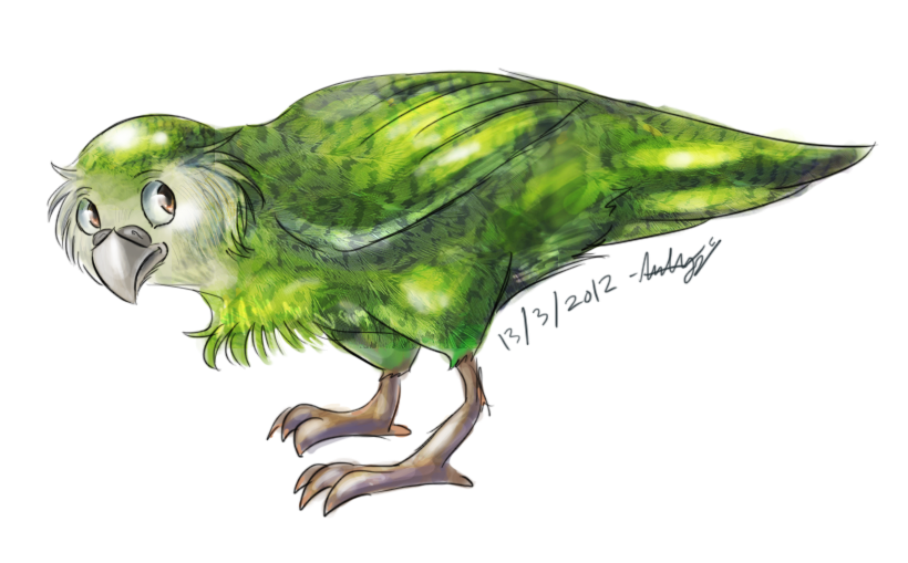The gallery for --> Parrot Drawing Images