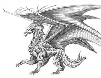 The Dragon by gyrfalcon65