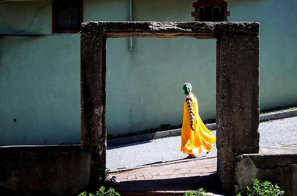 Sunflower by ZiaulKareem