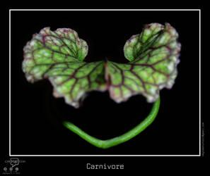 Carnivore by regisburin