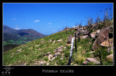 Poteaux brules by regisburin