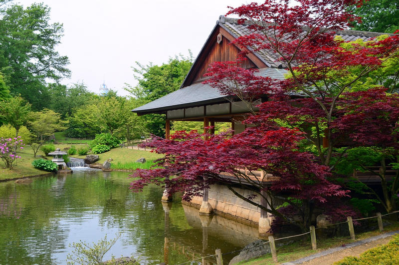 Hasselt Japanese Garden (27) by masimage
