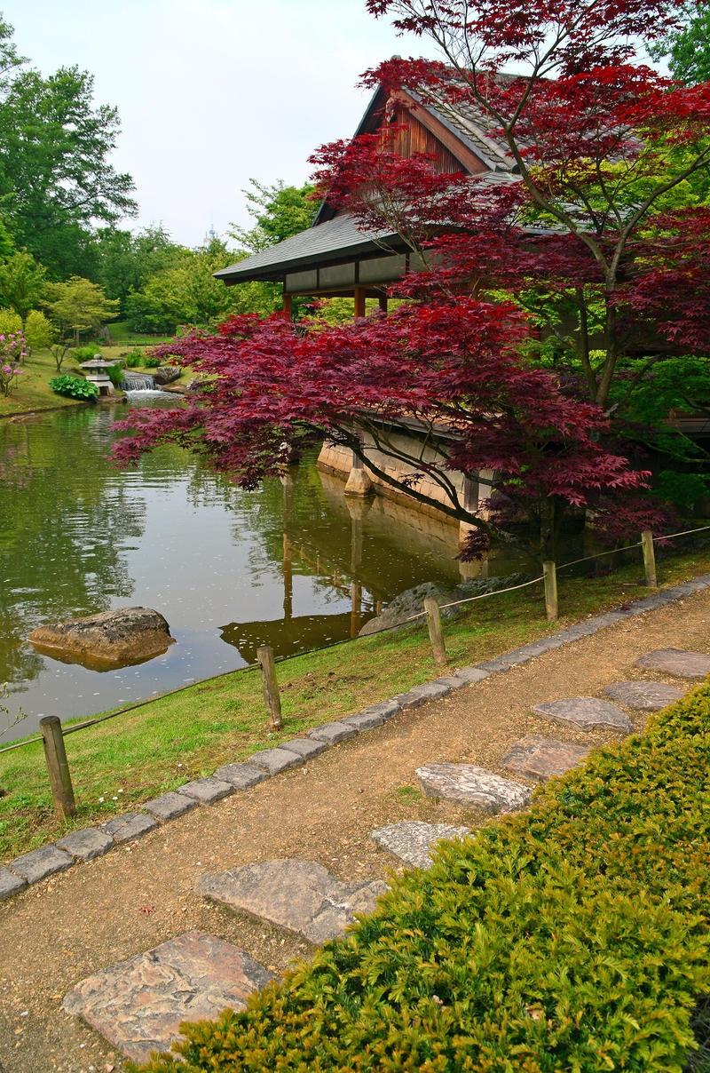 Hasselt Japanese Garden (28) By Masimage On DeviantArt