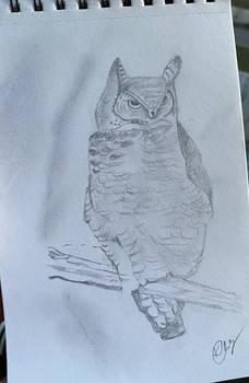 Draw the Owl