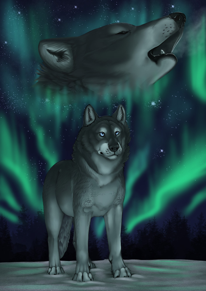 ..:: Nothern Lights ::.. by Kitsune-Nyx